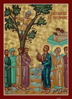 zacchaeus-sycamore-tree